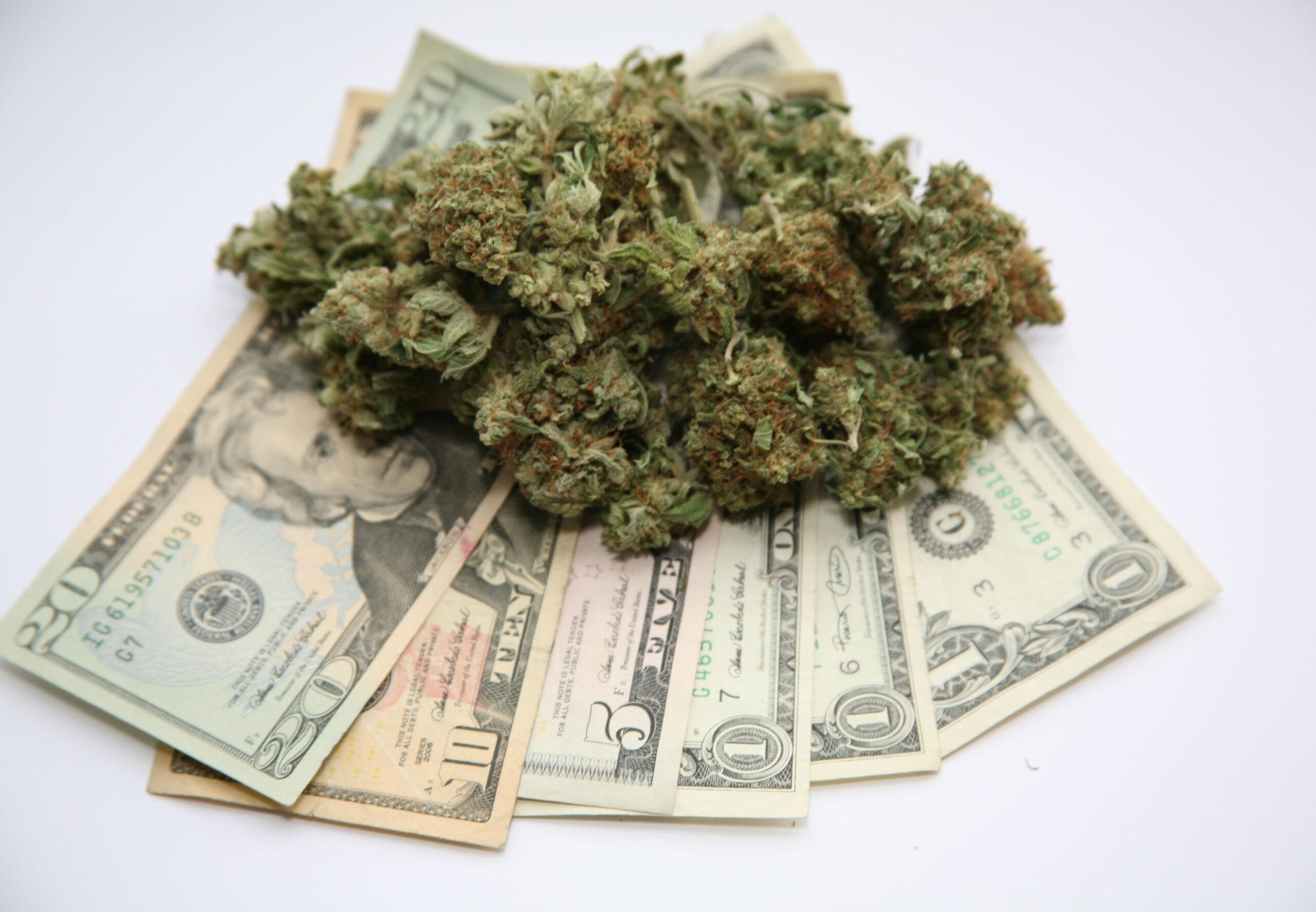 cannabis California Grant