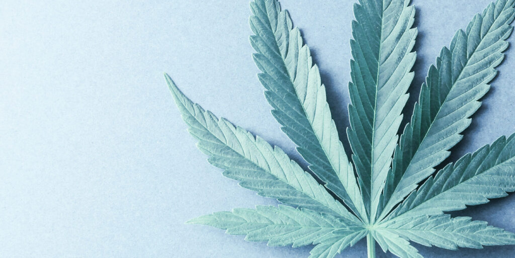 Cannabis news ACT Resources